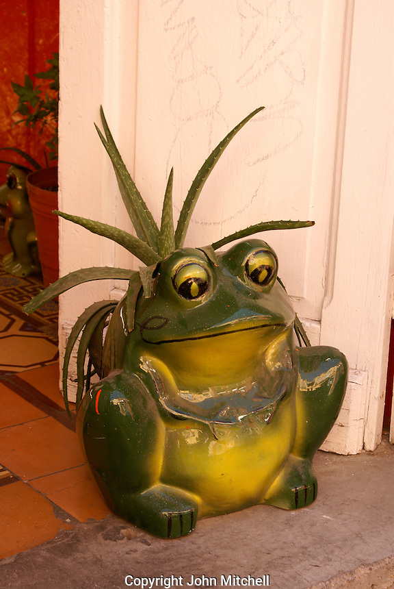 Frog plant holder in the city of San Luis de Potosi, Mexico