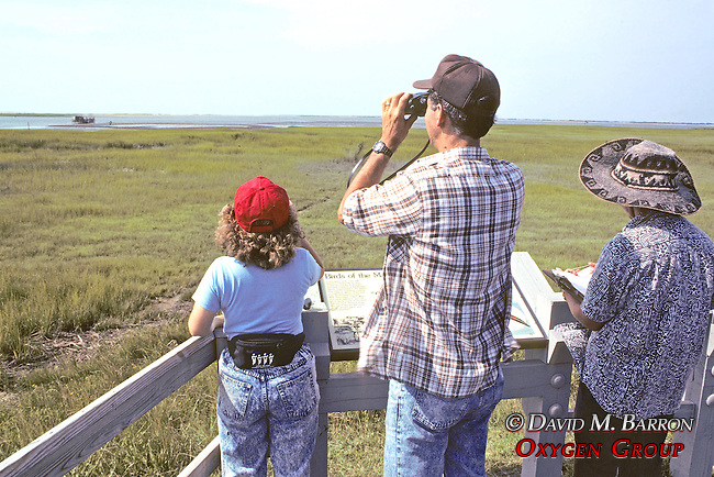 Michael Erwin And Earthwatchers Observing Bird Life