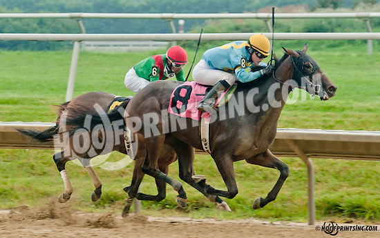 Parting Kiss winning at Delaware Park on 7/8/13