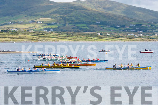 Great action from the start of the Senior Ladies race in Valentia on Sunday as 12 boats took to the water in the largest race of the day.