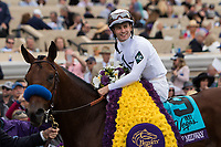 DEL MAR, CA - NOVEMBER 03: Flavien Prat, aboard Battle of Midway #9 after winning the Breeders' Cup Las Vegas Dirt Mile on Day 1 of the 2017 Breeders' Cup World Championships at Del Mar Thoroughbred Club on November 3, 2017 in Del Mar, California. (Photo by Sue Kawczynski/Eclipse Sportswire/Breeders Cup)