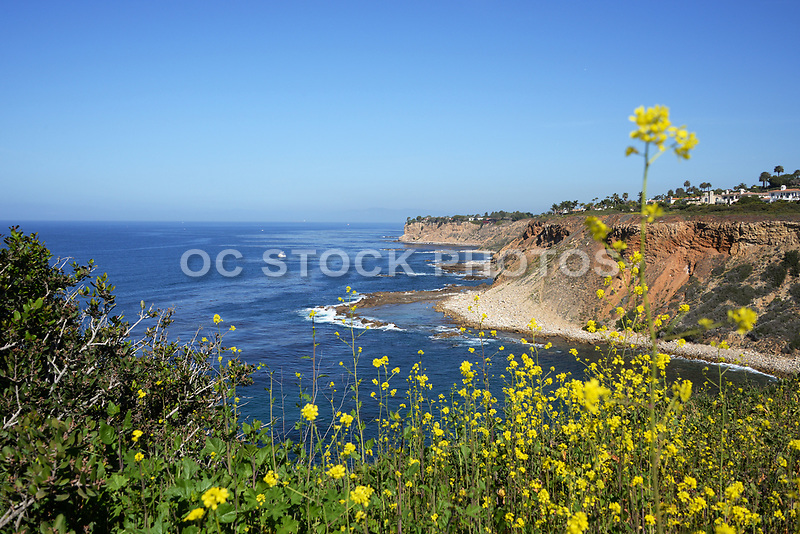 Point Vicente Northern Coastal Cliff and Ocean View