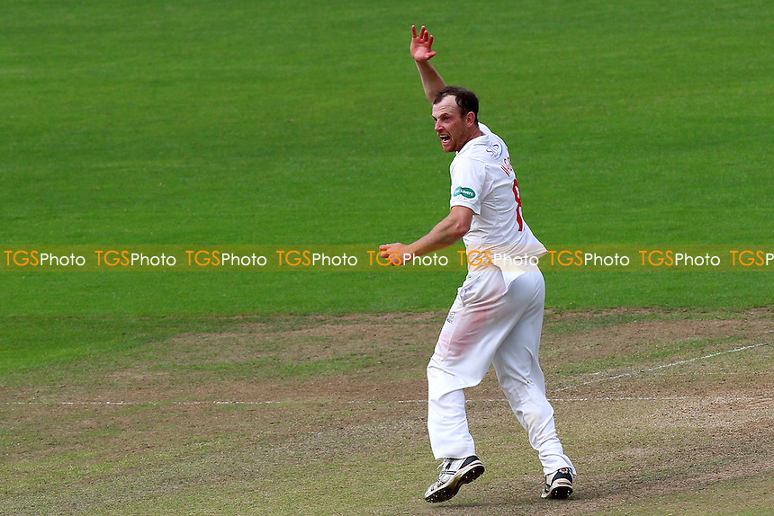 Graham Wagg of Glamorgan with an appeal for a wicket during Glamorgan CCC vs Essex CCC, Specsavers County Championship Division 2 Cricket at the SSE SWALEC Stadium on 23rd May 2016
