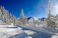 Germany, Bavaria, Upper Bavaria, Winter in Werdenfelser Land: winter scenery at Upper Isar Valley - Toll Road