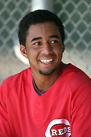 Yorman Rodriguez - Cincinnati Reds - 2010 Instructional League.Photo by:  Bill Mitchell/Four Seam Images..