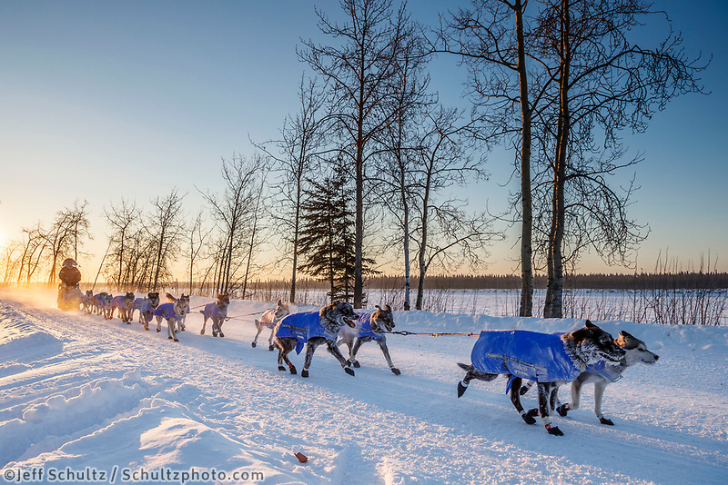Mark Selland runs down the road and into Tanana during the 2017 Iditarod on Wednesday morning March 8, 2017.<br /> <br /> Photo by Jeff Schultz/SchultzPhoto.com  (C) 2017  ALL RIGHTS RESERVED
