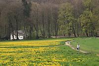 Park at Netherlands
