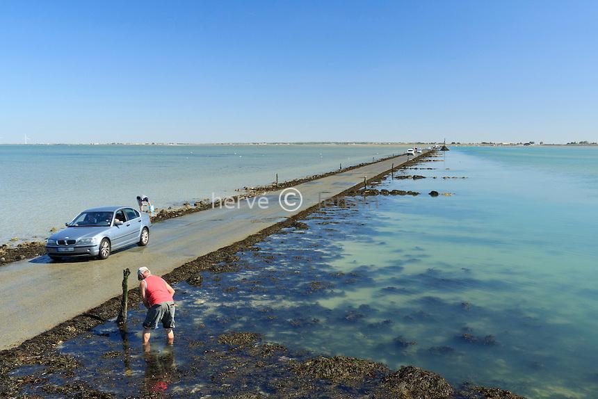 France, Vendée (85), île de Noirmoutier, entre Barbâtre et  Beauvoir-sur-Mer, le passage du Gois // France, Vendee, Island of Noirmoutier, between Barbatre and  Beauvoir sur Mer, the Passage du Gois is a periodically flooded passage