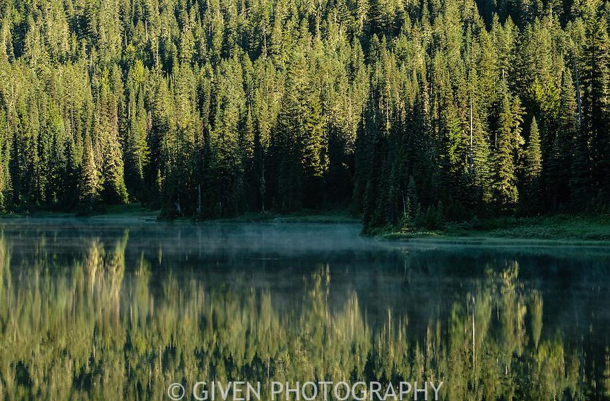 Pond and mist