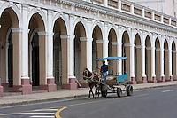 Cuba, Cienfuegos.  Animal Traction in Downtown Cienfuegos, Avenida 56.
