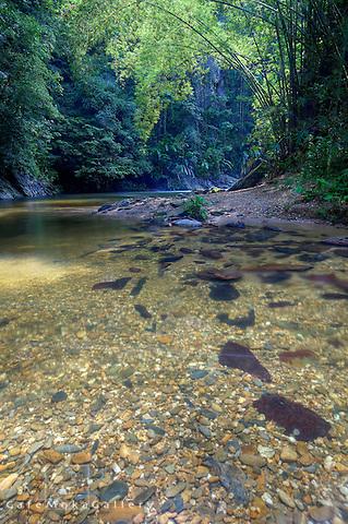 Three pools - Marianne River, Trinidad