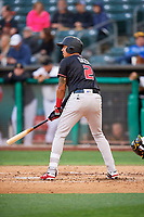 Yonathan Daza (2) of the Albuquerque Isotopes bats against the Salt Lake Bees at Smith's Ballpark on April 24, 2019 in Salt Lake City, Utah. The Isotopes defeated the Bees 5-4. (Stephen Smith/Four Seam Images)