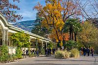 Italien, Suedtirol, Meran: Herbststimmung an der Winterpromenade   Italy, South Tyrol (Alto Adige-Trentino), Merano: autumn scene along Winter Promenade