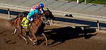 November 1, 2019 : British Idiom, ridden by Javier Castellano, wins the Breeders' Cup Juvenile Fillies on Breeders' Cup Championship Friday at Santa Anita Park in Arcadia, California on November 1, 2019. John Voorhees/Eclipse Sportswire/Breeders' Cup/CSM