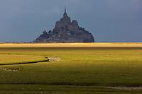 Europe/France/Normandie/Basse-Normandie/50/Manche/ Courtilss : Baie du Mont Saint-Michel, classée Patrimoine Mondial de l'UNESCO, Le Mont Saint-Michel   // Europe/France/Normandie/Basse-Normandie/50/Manche/ Vains : Bay of Mont Saint Michel, ,listed as World Heritage by UNESCO,  The Mont Saint-Michel