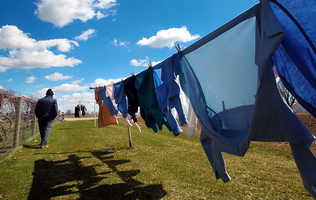 An Amish farmer walks along a clothesline on his farm near Drakesville in southeast Iowa's Davis County.   It is among only a handful of rural Iowa counties in the 2010 Census to gain population (2.4 percent).  Much of that population growth is due to a steadily growing Amish population.