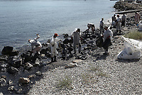 Pictured: Specialist crew clean up the oil spill that has reached the coast of Salamina, Greece<br />