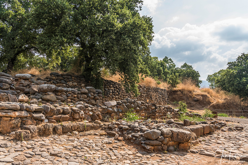 Ruins of the Old Testament city of Dan in the Tel Dan Nature Reserve in Galilee in northern Israel.