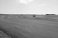Groton New London Airport CT-DOT Project #58-299 Progress Photography   Mizzy Construction Shoot Five