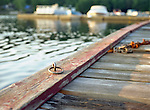 Tie-Up Ring on Dock in Central Ontario