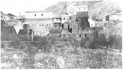 West-side view of the Pro Patria Mill complex.<br /> RGS  Rico, CO  ca. 1901-1908