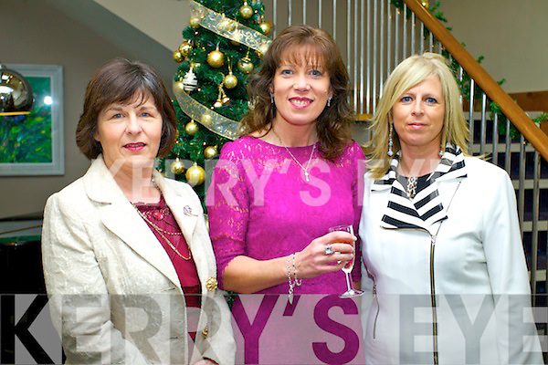 Helen Harrington (Kilmoyley) Hannah Quirke (Ballyheigue) and Ellen Healy (Ballyheigue) pictured at the Enable Ireland Fashion lunch on Sunday in Ballyroe Heights hotel.