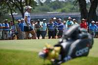 Lexi Thompson (USA) looks over her putt on 7 during round 1 of the 2019 US Women's Open, Charleston Country Club, Charleston, South Carolina,  USA. 5/30/2019.<br /> Picture: Golffile | Ken Murray<br /> <br /> All photo usage must carry mandatory copyright credit (© Golffile | Ken Murray)