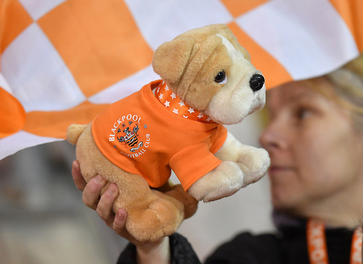 Fans<br /> <br /> Photographer Dave Howarth/CameraSport<br /> <br /> The Emirates FA Cup Second Round Replay - Blackpool v Solihull Moors - Tuesday 18th December 2018 - Bloomfield Road - Blackpool<br />  <br /> World Copyright © 2018 CameraSport. All rights reserved. 43 Linden Ave. Countesthorpe. Leicester. England. LE8 5PG - Tel: +44 (0) 116 277 4147 - admin@camerasport.com - www.camerasport.com