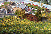 An aerial view of Karma Winery and Vineyards on the south shore of Lake Chelan.