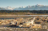 Driftwood on Gillespies Beach with Southern Alps in background, Westland National Park, World Heritage Area, West Coast, New Zealand