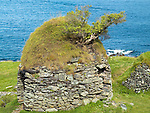 25-8-2014: Former homes of Blasket Islanders lay in ruins on the Great Blasket Island of West Kerry.<br /> Picture by Don MacMonagle