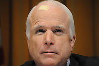 Arpaio-McCain