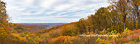 63995-00903 Fall color at overlook, Brown County State Park, IN