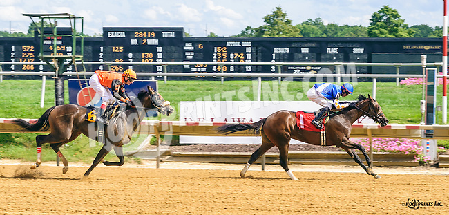 Patriotic Endeavour winning at Delaware Park on 8/10/16