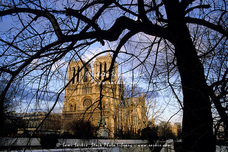Notre Dame de Paris seen through bare trees at winter during sunset, Paris, France.