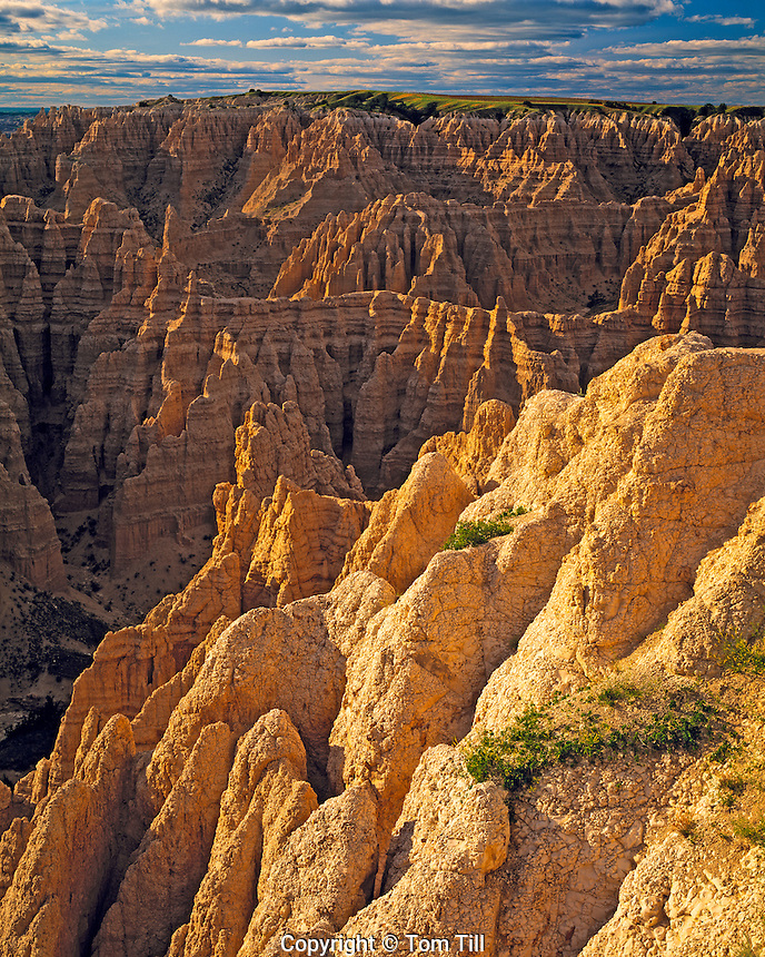 Summer View from Sheep Mountain Table, Sacred site to Sioux Indians, Badlands National Park, South Unit, South Dakota