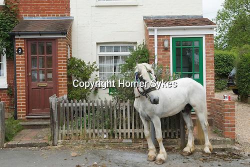 Gypsy annual Horse Fair. Wickham Hampshire UK.