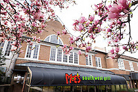 Moe's Southwest Grill framed by Japanese magnolia tree blossoms.<br />