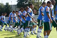 SAO PAULO, 26 DE FEVEREIRO, 2013  - TREINO S.E. PALMEIRAS - Jogadores do palmeiras durante treino na Academia de Futebol, na manhã desta terça-feira(26) no bairro da Barra Funda, regiao oeste da capital paulista. A equipe se prepara para enfrentar o Libertad (PAR), pela 2ª rodada da Libertadores -  FOTO: LOLA OLIVEIRA - BRAZIL PHOTO PRESS