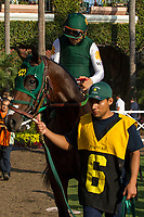 DEL MAR, CA. SEPTEMBER 4: #6 Bolt d'Oro  ridden by Corey Nakatani, in the walking ring before the Del Mar Futurity (Grade l) on September 4, 2017 at Del Mar Thoroughbred Club in Del Mar, CA. (Photo by Casey Phillips/Eclipse Sportswire/Getty )