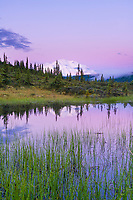 Purple light reflects in water with Mt Denali in the distance, Denali National Park, Interior, Alaska