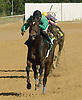Cherokee Mystery winning at Delaware Park on 10/20/12