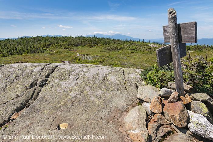 Appalachian Trail - Alpine/subalpine bog on the summit of Mount Success in Success, New Hampshire.