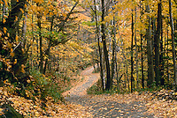 Country road through rural New England in fall