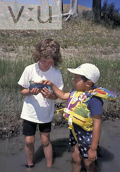 Caucasian girl and Asian boy observing a Freshwater Mussel, USA.