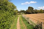 Country path through fields and hedgerow, Shottisham, Suffolk, England, UK