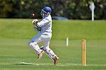 Cricket - ACOB v Wanderers, 1 November
