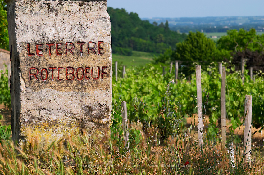 A stone with the inscription Letertre Roteboeuf Le Tertre painted in red and the vineyard in the background  Saint Emilion  Bordeaux Gironde Aquitaine France