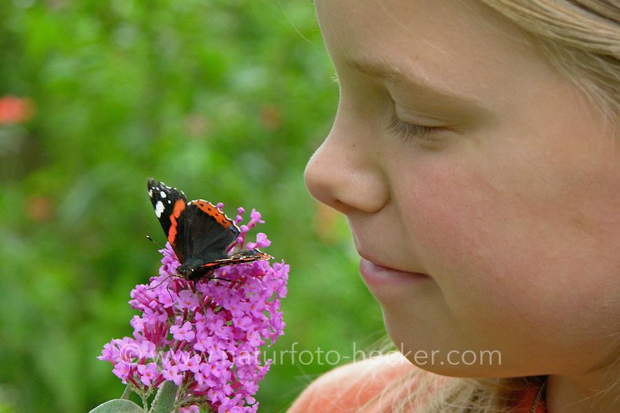 Mädchen beobachtet Schmetterling, Admiral auf Schmetterlingsflieder, Buddleja, Sommerflieder, Vanessa atalanta, red admiral