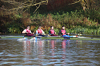Crew: 83   Op 4- BAND-1   Oxford Brookes University Boat Club   OXB-MORGAN<br /> <br /> Wallingford Head 2017<br /> <br /> To purchase this photo, or to see pricing information for Prints and Downloads, click the blue 'Add to Cart' button at the top-right of the page.